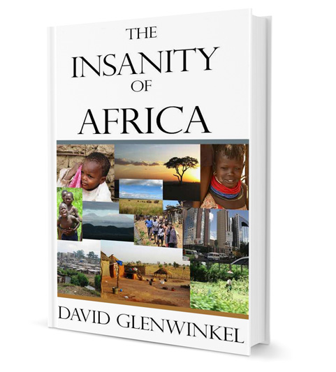 The Insanty of Africa by David Glenwinkel